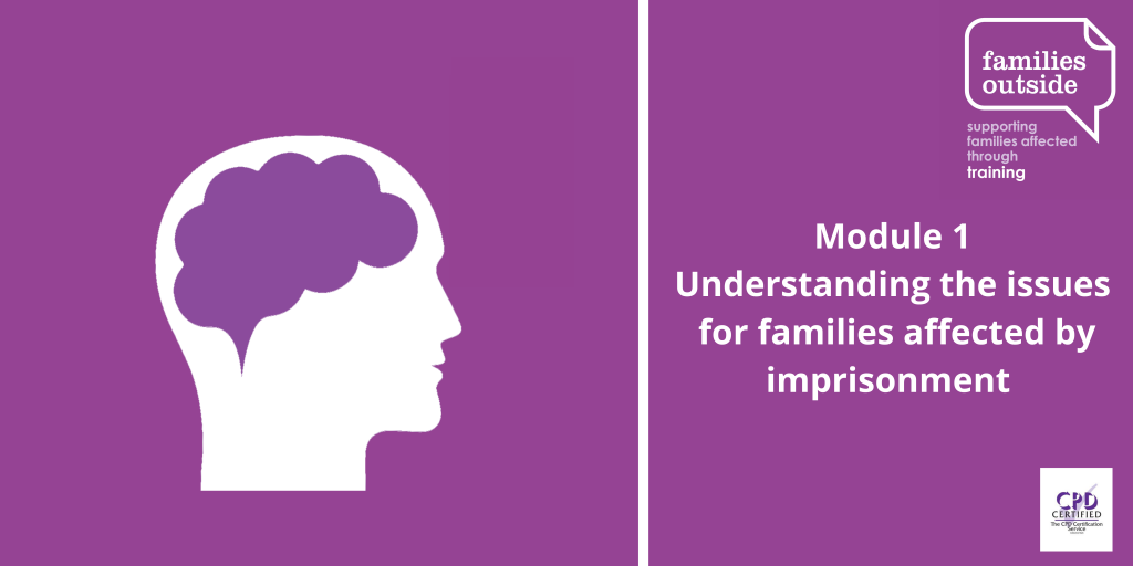 Module 1: Understanding the issues for families affected by imprisonment (Sold out)
