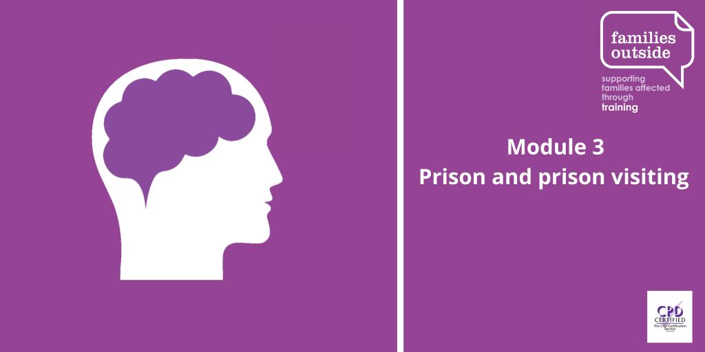 Module 3: Prison and prison visiting